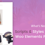 What's New in OceanWP: Scripts & Styles Panel and Woo Elements Positioning